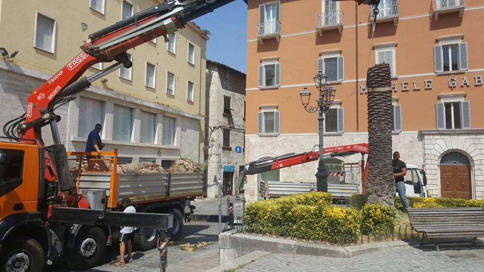 Piazza Roma e lavori sulle palme