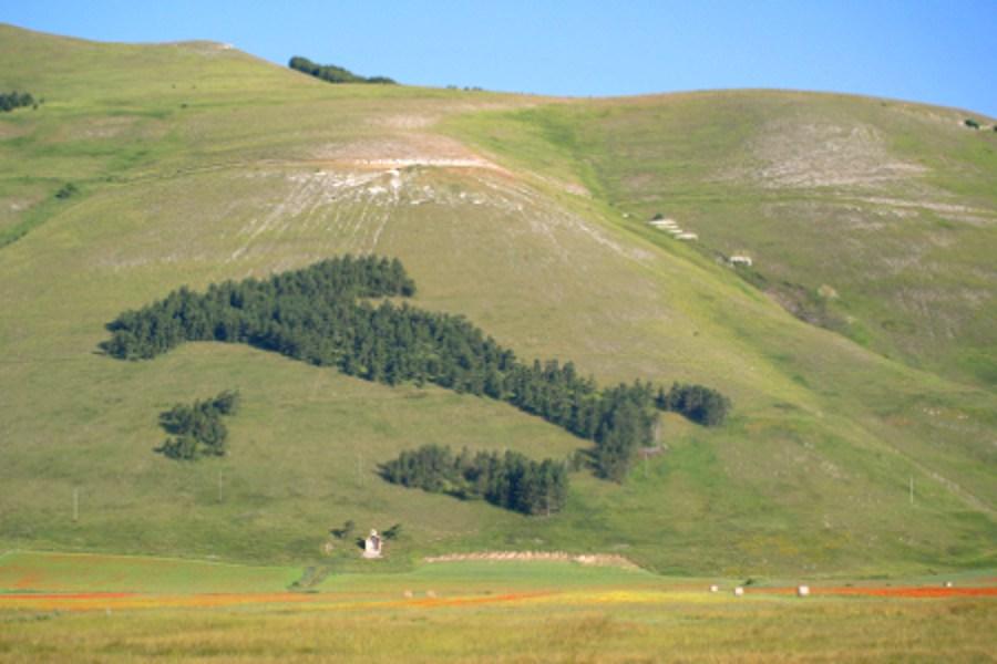 castelluccio-di-norcia-litalia