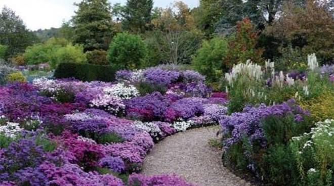 giardino-delle-esperidi-153679.660x368