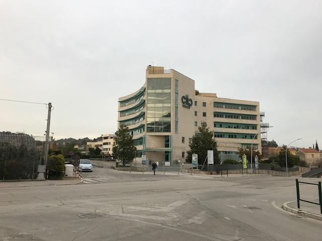 Ciip Sede