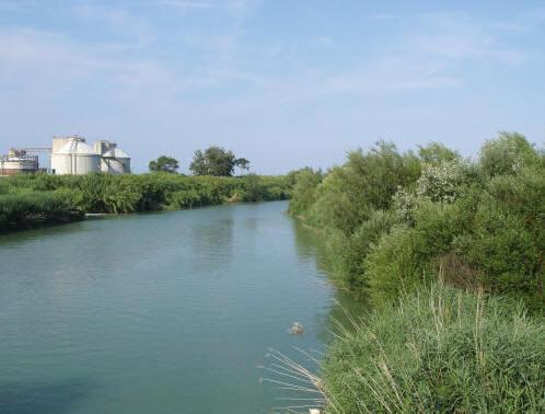 fiume-Tronto-nei-pressi-della-foce